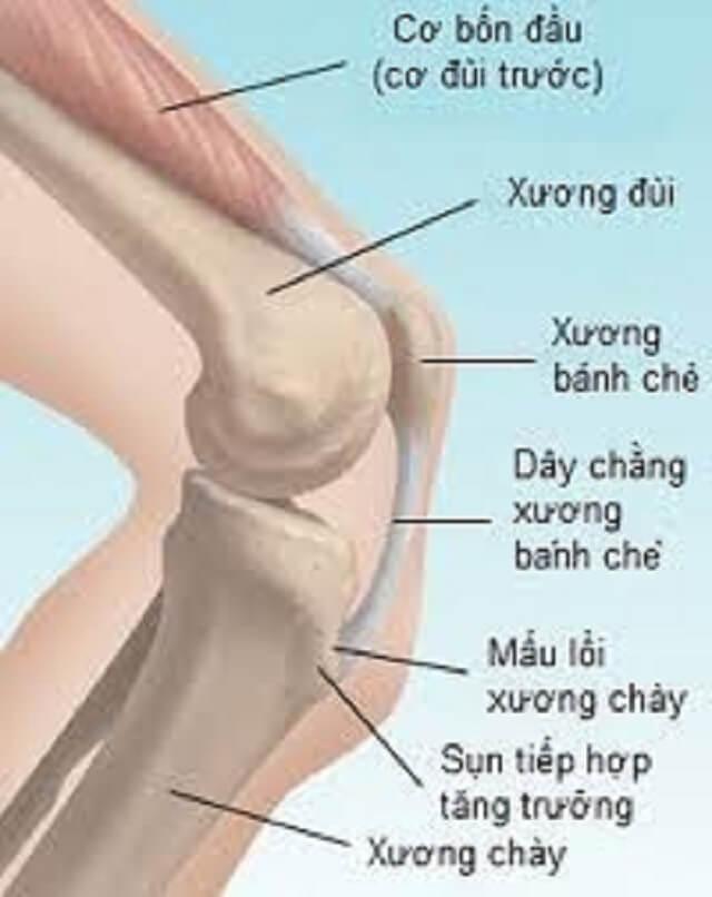 Trẻ đau chân do tăng trưởng là nguyên nhân thường gặp nhất